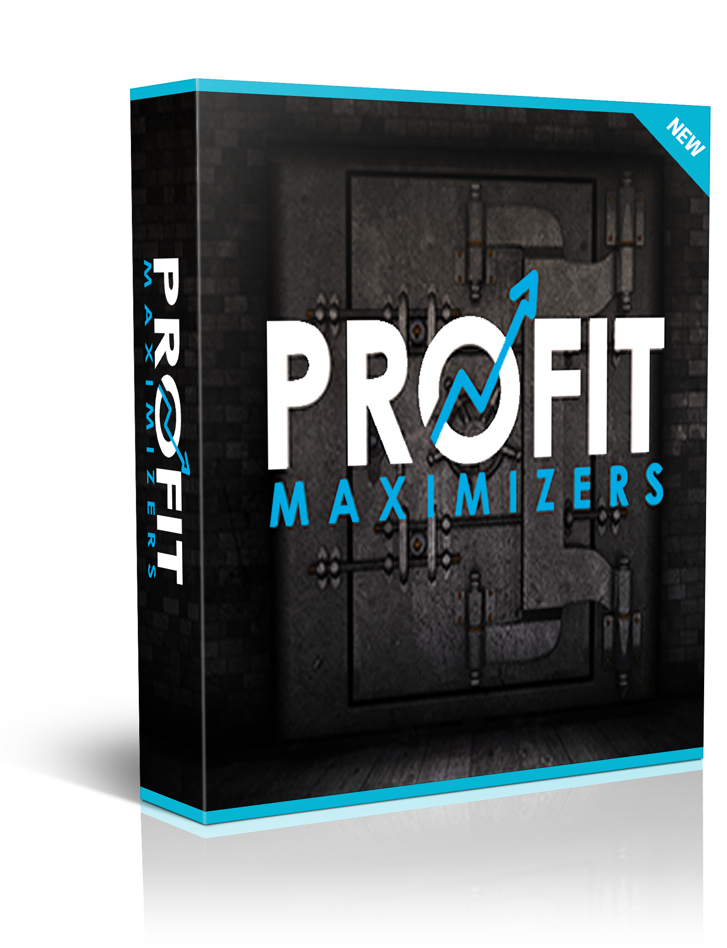 profit maximizers scam review