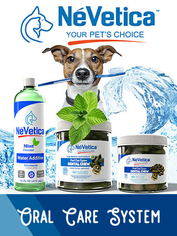 nevetica oral care for dogs