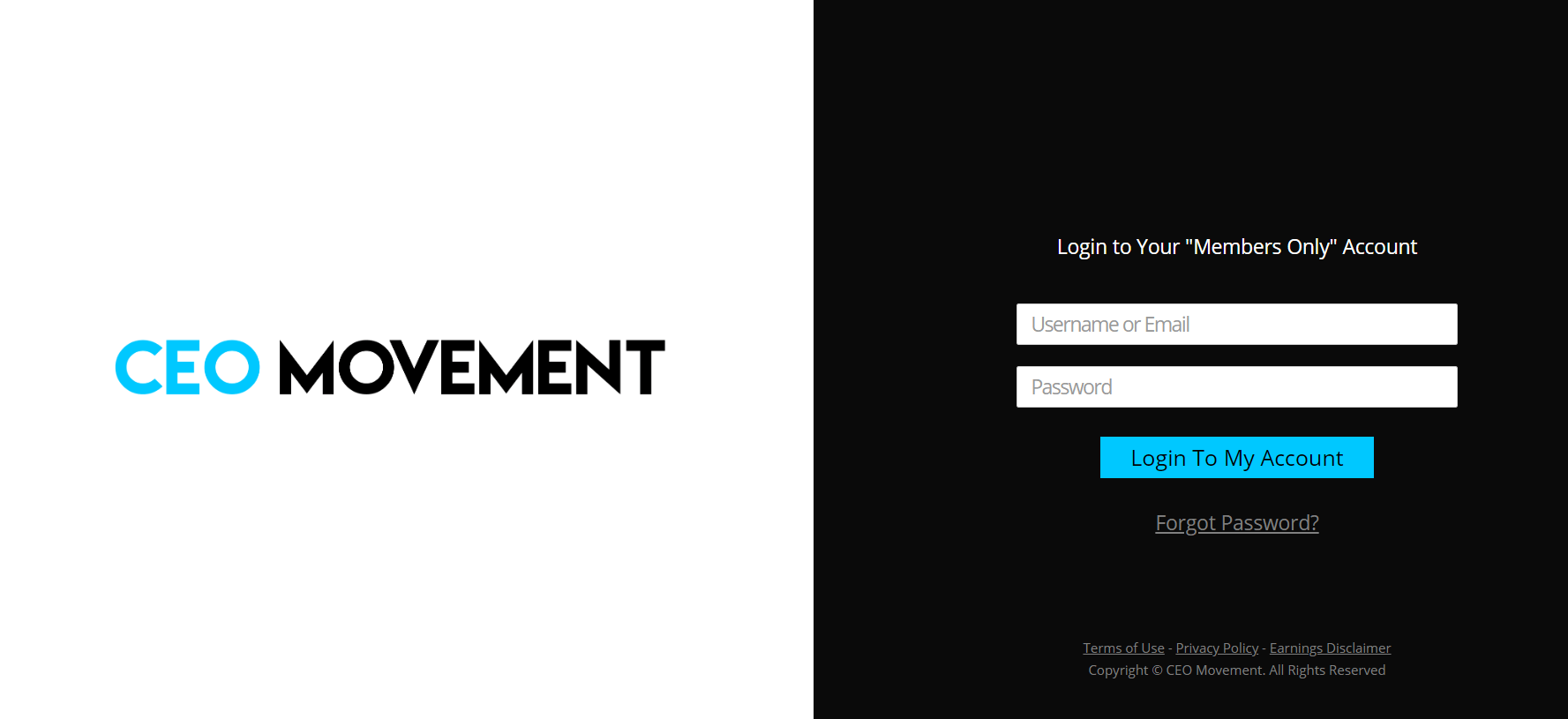 ceo movement website